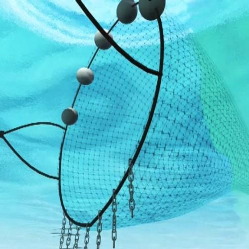 Cartoon 3D animation กรมทรัพยากรทางทะเล ตอน อวกลาก